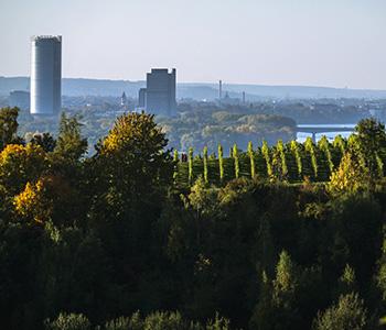 Kulturausflug in Bonn mit einem Oldtimer